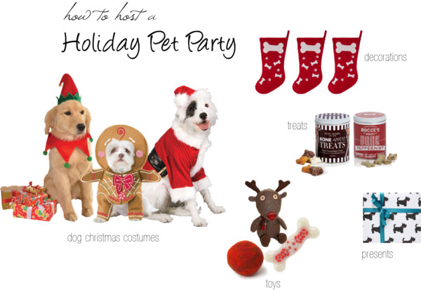 How to host a Holiday Pet Party