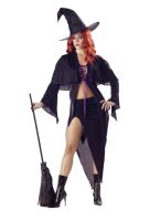 Spellbound Witch Adult Costume