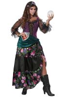 Mystical Charmer Adult Costume