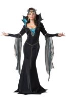Evil Sorceress Adult Costume