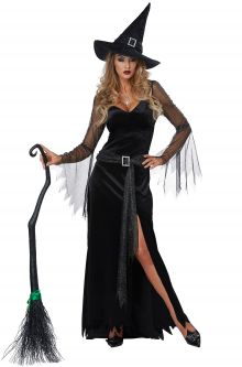 2017 New Costume Picks Rich Witch Adult Costume