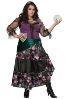Mystical Charmer Plus Size Costume