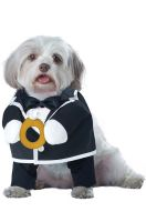 Puppy Love-Groom Dog Costume