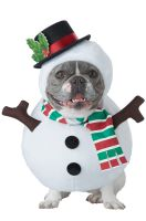 Winter Snowman Pet Costume