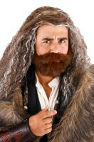 Thorin Oakenshield Wig and Beard