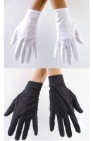 Costume Gloves Accessory