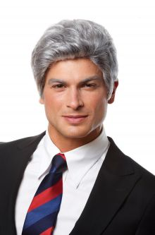 Mr. President Wig  sc 1 st  Pure Costumes & Grey Wigs - Gray Wigs - Grey Costume Wigs - Gray Costume Wigs for ...