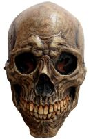 Ancient Skull Adult Mask