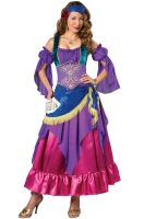 Gypsy Treasure Adult Costume