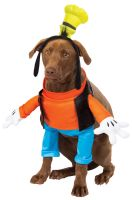 Goofy Pet Costume