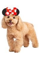 Minnie Mouse Pet Accessory