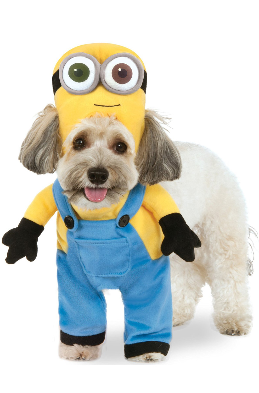 Minion Bob Pet Costume  sc 1 st  eBay & Brand New Despicable Me Minion Bob Pet Costume | eBay