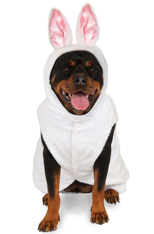 Bunny Big Dog Pet Costume Purecostumes Com