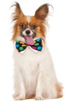 Polka Dot Bowtie Pet Accessory