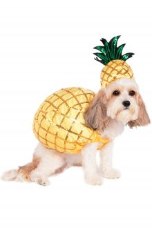 2017 New Costume Picks Pineapple Pet Costume