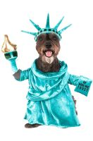 Statue of Liberty Pet Costume