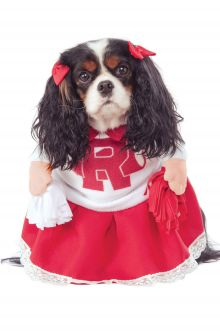 rydell high cheerleader pet costume