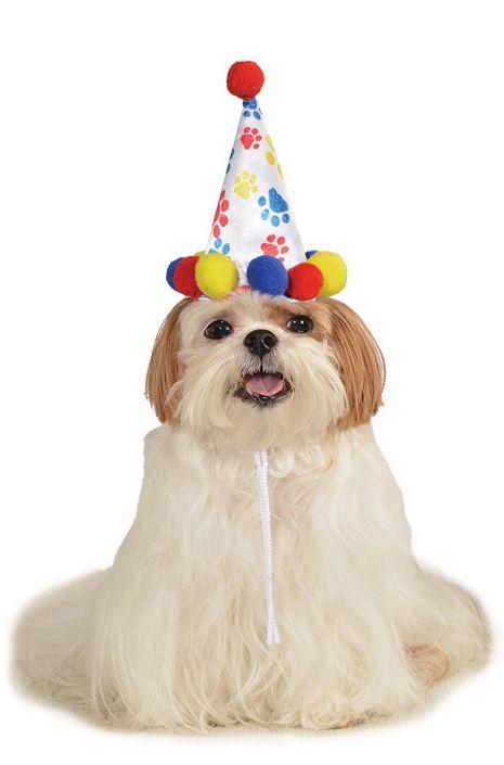 Boys Birthday Hat Pet Costume