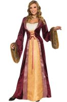 Milady of the Castle Adult Costume