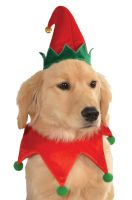 Elf Pet Costume Kit