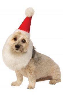 santa hat with beard pet costume