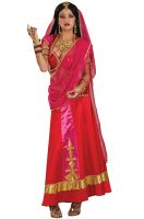 Bollywood Beauty Adult Costume